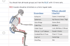 Physical-Best-Exercise-1.0